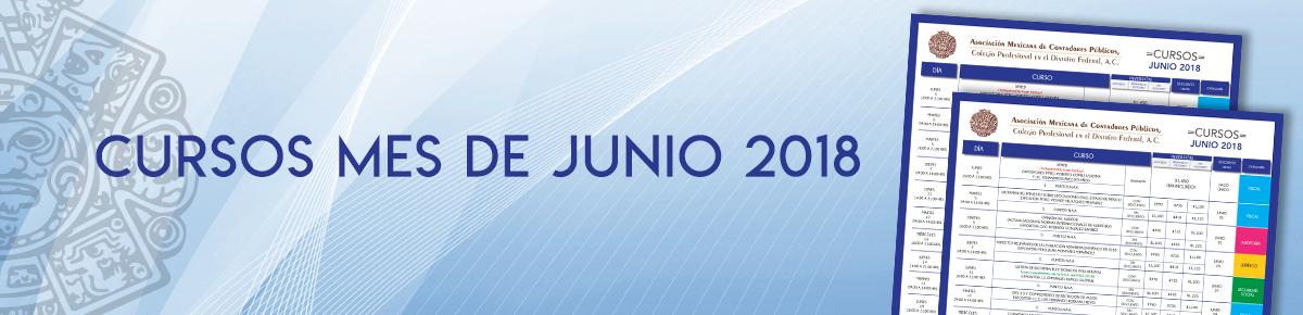 BANNER CURSOS JUNIO 2018