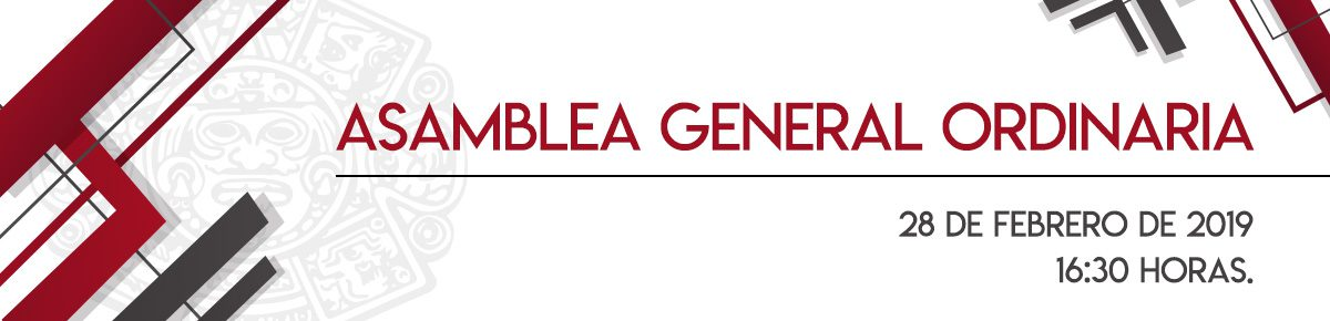 BANNER ASAMBLEA GENERAL 19